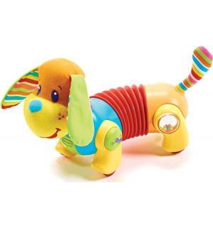 Развивающая игрушка  Догони меня собачка Фрэд 25 см Tiny Love