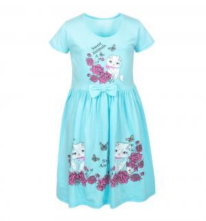 Платье , цвет: бирюзовый M&D