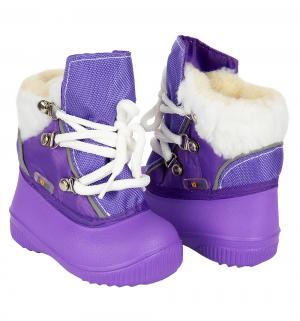 Сноубутсы , цвет: фиолетовый Дюна