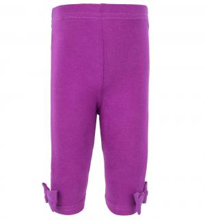 Комплект платье/леггинсы , цвет: розовый Hudson Baby