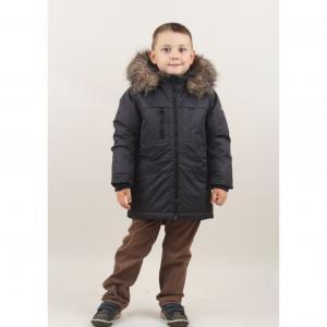 Куртка Ours Blanc Childrens Brand, цвет: серый Children's Brand