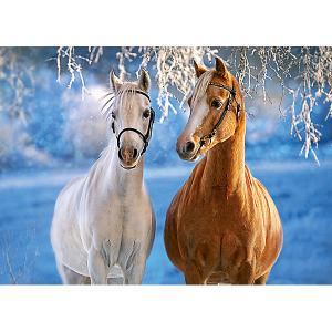 Пазл  Лошади зимой, 260 деталей Castorland
