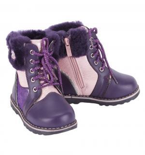 Ботинки , цвет: розовый/фиолетовый Думми