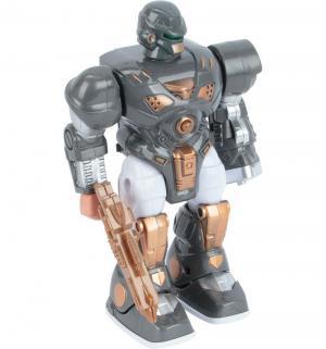 Интерактивный робот  22.5 см цвет: серый Tongde