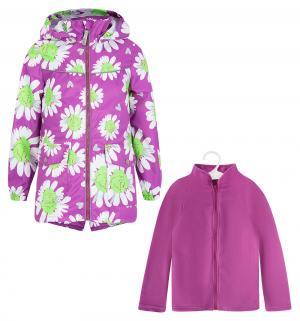 Комплект толстовка/ветровка , цвет: фиолетовый/зеленый Stella