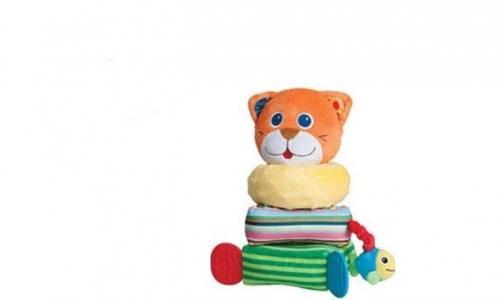 Развивающая игрушка  Пирамидка 81401 Parkfield