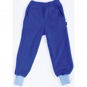 Спортивные брюки  Чемпион ЛисФлис. Цвет: синий