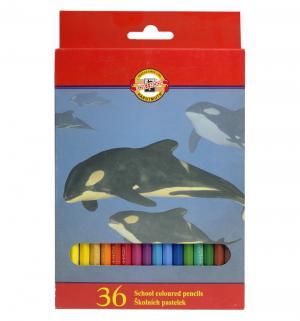 Карандаши цветные  Животные Koh-I-Noor