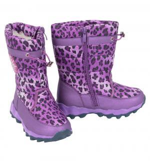 Сапоги , цвет: фиолетовый Tom.m