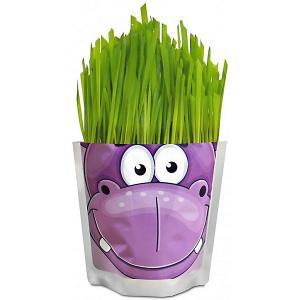 Набор для выращивания  Бегемот Happy Plant