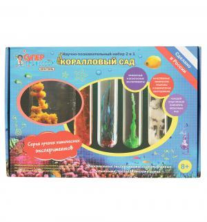 Набор химических экспериментов  Коралловый сад 410 г Qiddycome
