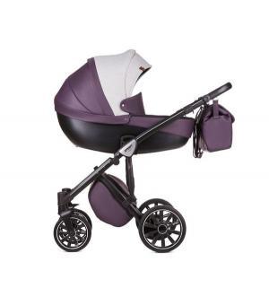 Коляска 2 в 1  Sport Q1, цвет: lavender field Anex
