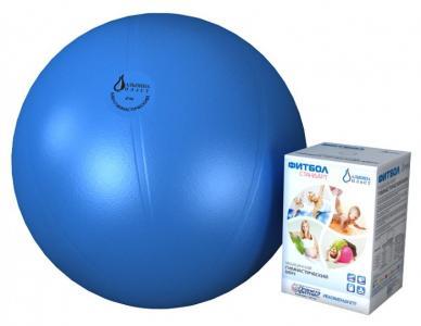 Мяч гимнастический фитбол Стандарт 45 см Альпина Пласт