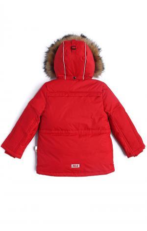 Куртка  Lars, цвет: красный Nels