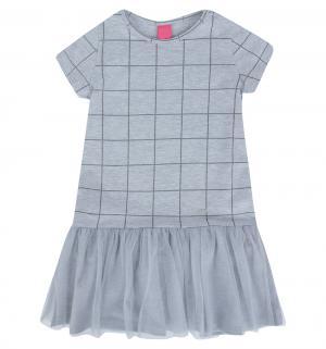 Платье , цвет: серый Atut