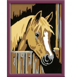 Раскрашивание по номерам  Лошадь в стойле Ravensburger