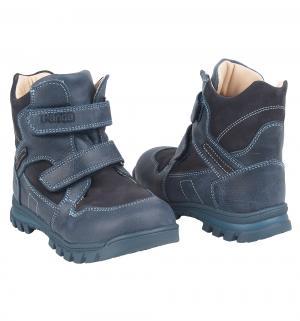 Ботинки , цвет: синий M. Panda