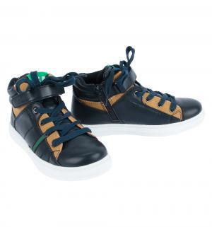 Ботинки , цвет: черный Indigo Kids