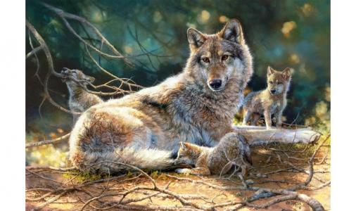 Пазлы Волки (1500 деталей) Castorland