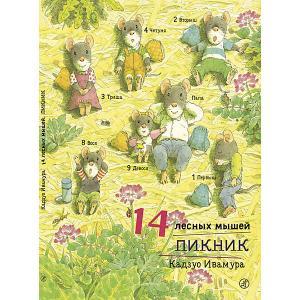 Сказка 14 лесных мышей. Пикник, Ивамура К. Самокат