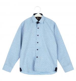 Рубашка , цвет: голубой Tsarevich