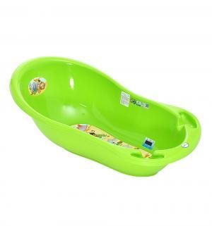 Ванночка  Сафари, цвет: зеленый Tega