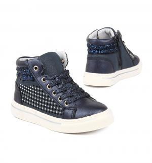 Ботинки , цвет: синий Twins