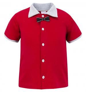 Комплект футболка/брюки  Леди и Джентльмены, цвет: красный Мамуляндия
