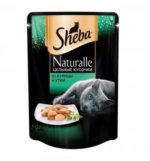 Влажный корм  для взрослых кошек, из курицы и утки, 80г Sheba