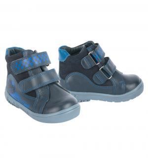 Ботинки , цвет: синий El Tempo