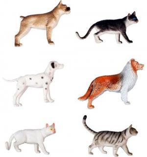 Игровой набор  В мире животных Собаки и кошки 1Toy