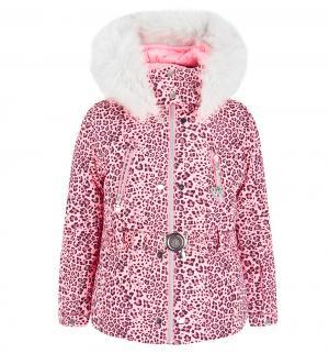 Куртка , цвет: розовый Poivre Blanc