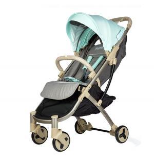 Прогулочная коляска  ST136, цвет: Blue Babyruler
