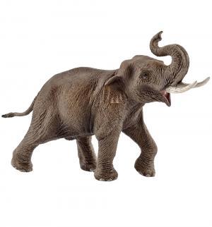 Фигурка  Азиатский слон самец Schleich