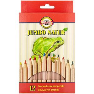 Набор цветных карандашей  Jumbo Natur, 12 цветов KOH-I-NOOR. Цвет: бежевый