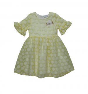 Платье  Нарядные платья Sweet Berry