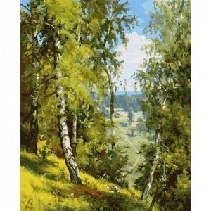 Картина по номерам Прищепа. Березы в лесу 40х50 см Molly