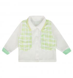 Кофта , цвет: зеленый Мелонс