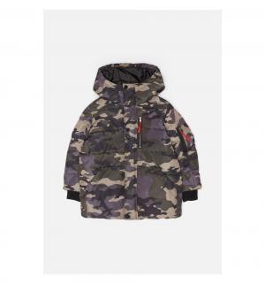 Куртка  Garsi, цвет: мультиколор Acoola