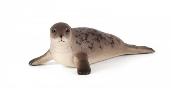 Animal Planet Длинномордый тюлень L Mojo
