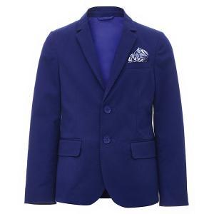 Пиджак  для мальчика Gulliver. Цвет: синий