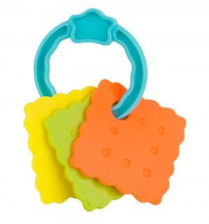 Развивающая игрушка  пластинки на бирюзовом кольце Zhorya