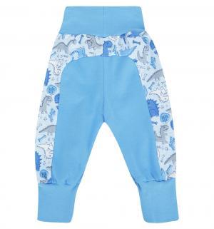 Брюки  Dino Blue, цвет: голубой Makoma