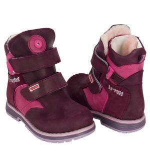 Ботинки , цвет: фиолетовый Bebetom