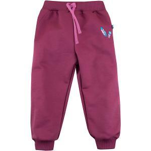 Спортивные брюки Bossa Nova. Цвет: бордовый