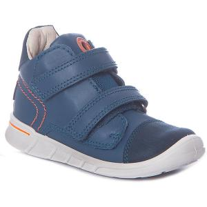 Ботинки ECCO. Цвет: синий деним