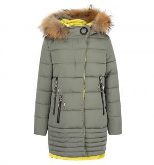 Пальто , цвет: зеленый Fobs