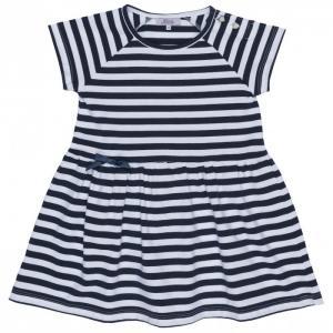 Платье 17-2004-C Born