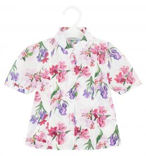 Блузка , цвет: белый Semicvet