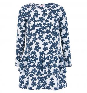 Платье , цвет: синий Atut